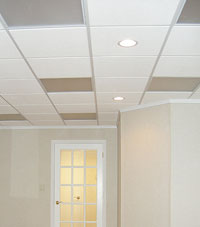 Basement Ceiling Tiles for a project we worked on in New Philadelphia, Ohio